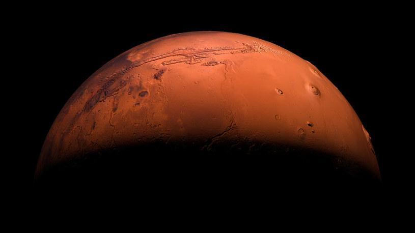 Za 20-70 mln lat Mars może mieć własny pierścień, podobny do Saturna /123RF/PICSEL