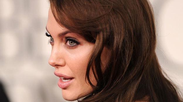 Za 3.99 dolarów można się zapoznać z historią Angeliny Jolie w wersji komiksowej /fot. Jason Merritt /Getty Images/Flash Press Media