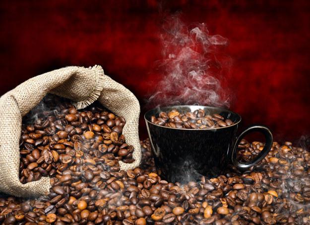 Za filiżankę dobrej kawy warto zapłacić kilkanaście złotych /Picsel /123RF/PICSEL