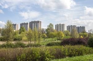 Za mało zieleni w Poznaniu? Kandydaci proponują