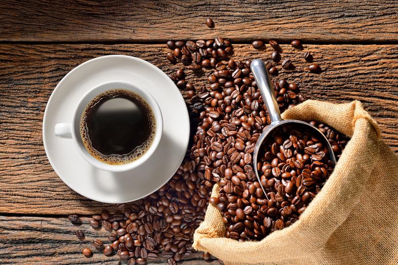 Za najszlachetniejszą odmianę kawy uchodzi Arabica. /123RF/PICSEL