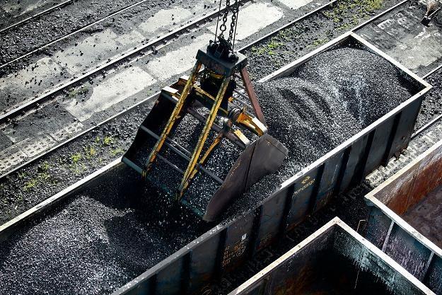 Za polski węgiel jesteśmy gotowi płacić więcej /©123RF/PICSEL
