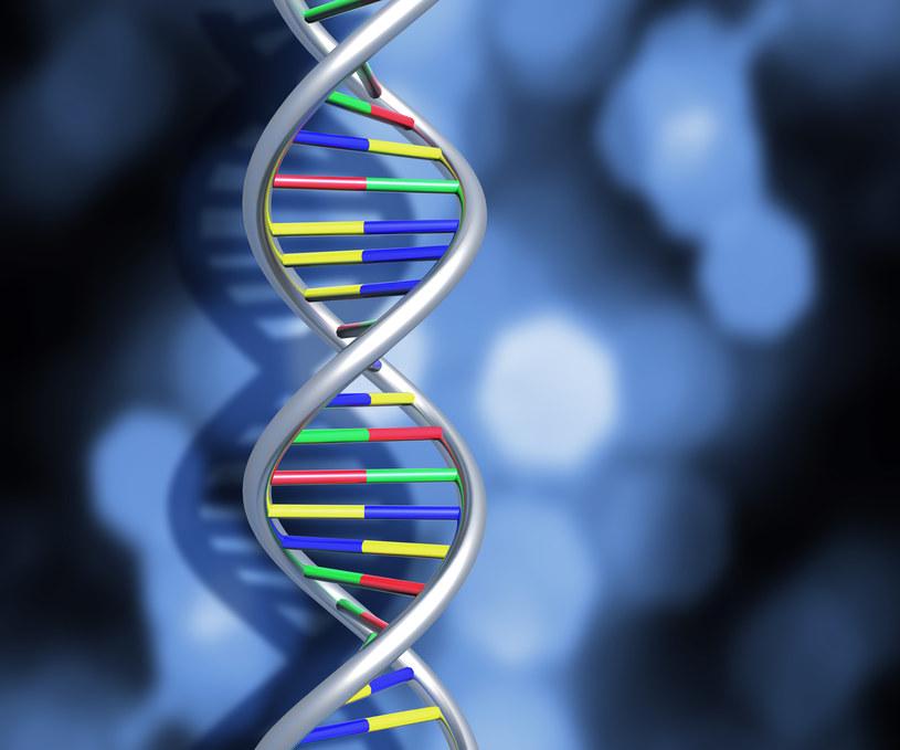 Za pomocą edycji zasad można naprawić mutacje punktowe /© Glowimages