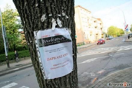 Za wieszanie ogłoszeń na drzewach można dostać nawet 500 zł mandatu./fot. Damian Krzanowski /krosno24.pl