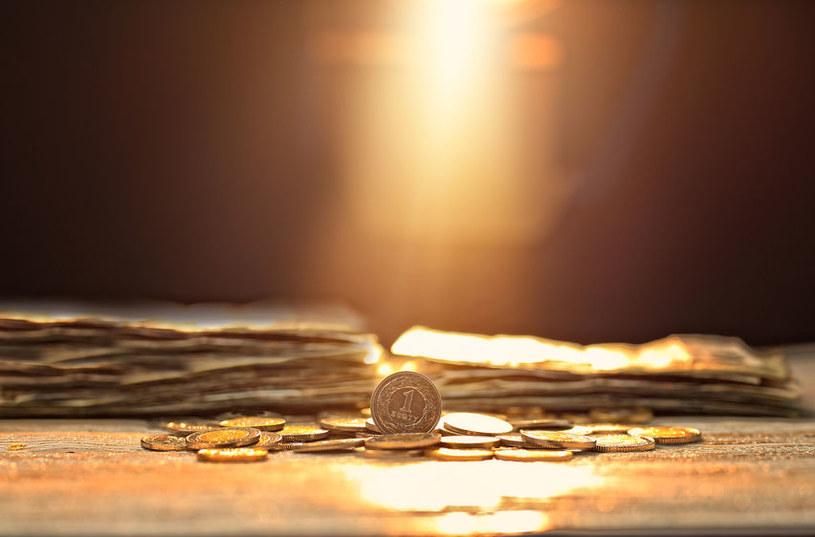 Za zaoszczędzone pieniądze Polacy kupują działki! /123RF/PICSEL