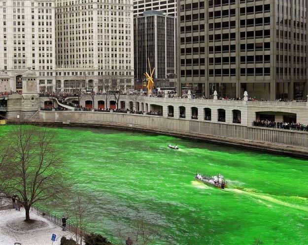 Zabarwiona na zielono rzeka Chicago /AFP