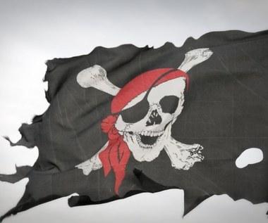 """""""Zabezpieczenie"""" sprzętu przez policję - tego najbardziej boją się polscy piraci"""