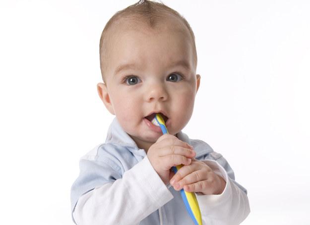 Ząbkujący maluch gryzie zwykle wszystko, co wpadnie mu w rączki /123RF/PICSEL