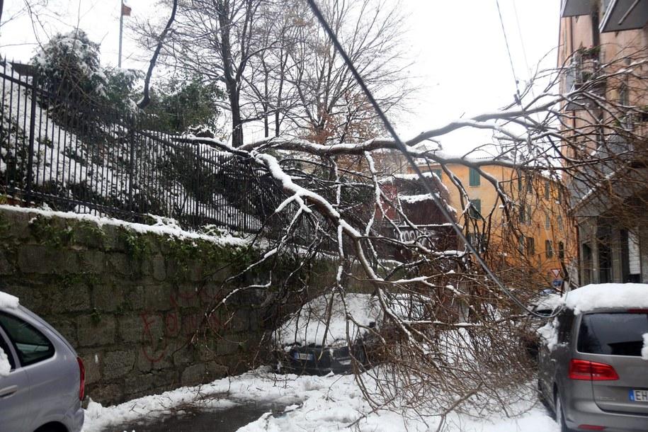 Zablokowana ulica w Bolonii //GIORGIO BENVENUTI /PAP/EPA