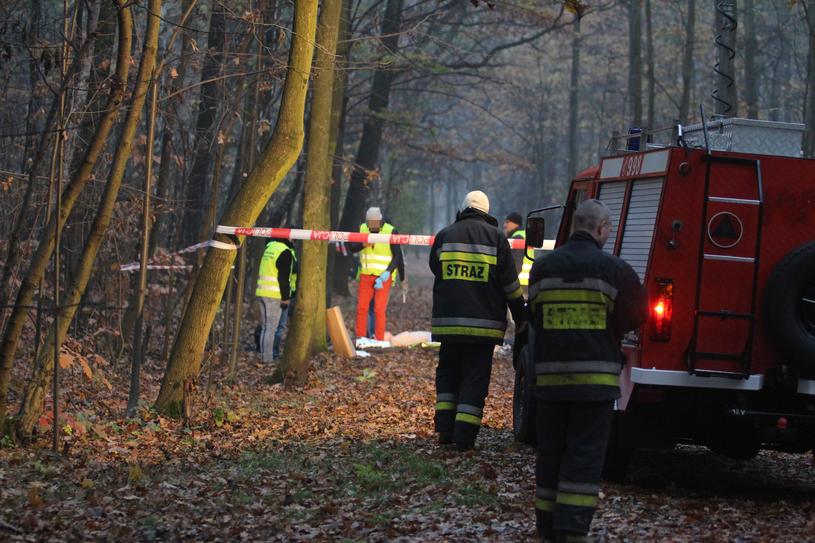 Zabójstwo w katowickim parku. Służby zabezpieczają miejsce zbrodni /Arkadiusz Gola /East News