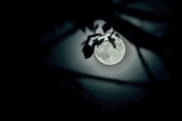 W nocy nastąpi częściowe zaćmienie Księżyca