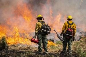 Zaczyna się epoka wielkich pożarów lasów