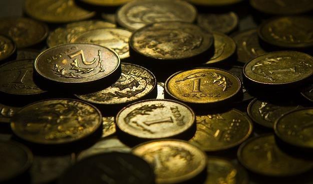 Żądają więcej niż 1 grosz? Uważaj, to mogą być oszuści! fot. Bartosz Krupa /Agencja SE/East News