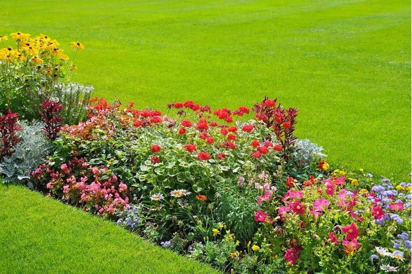 Zadbaj o jakość gleby, by cieszyć się pięknym ogrodem /123RF/PICSEL