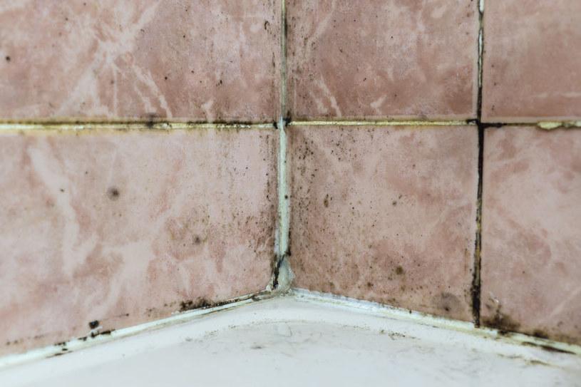 Zadbaj o prawidłową cyrkulację powietrza w łazience i kuchni /123RF/PICSEL