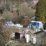 Zaginięcie Iwony Wieczorek: Po zmroku policjanci przerwali poszukiwania na działkach w Sopocie
