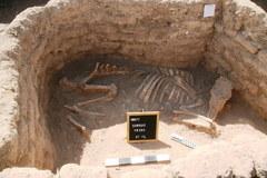 """""""Zaginione złote miasto"""" odnalezione pod pustynnym piaskiem"""