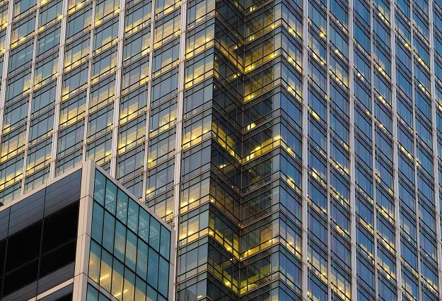 Zagranica wydaje w Polsce miliardy na szklane domy /©123RF/PICSEL