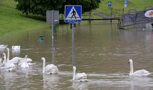 Zagrożenie powodziowe. IMGW uspokaja