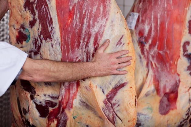 Zakaz sprzedaży 80 kg polskiej wołowiny na Litwie /©123RF/PICSEL