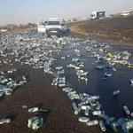 Zakaz sprzedaży alkoholu: Zobacz, co dzieje się, gdy przewróci się ciężarówka z piwem...