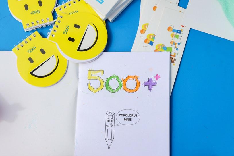 """""""Zakład Ubezpieczeń Społecznych będzie gotowy do realizacji świadczenia 500 plus"""" /Jacek Domiński /Reporter"""