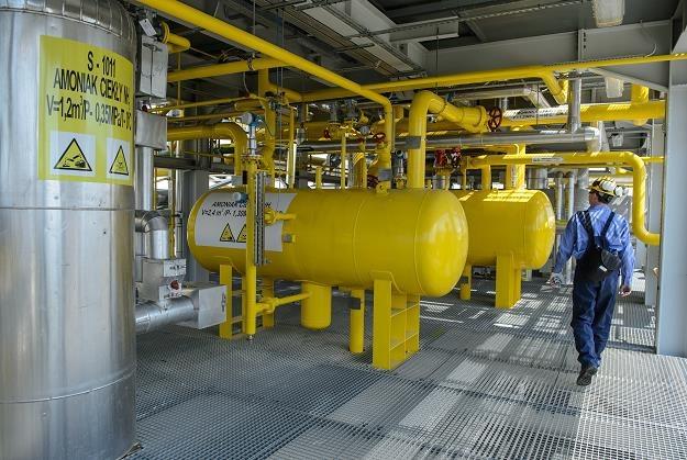 Zakłady azotowe w Puławach - hala produkcyjna /PAP