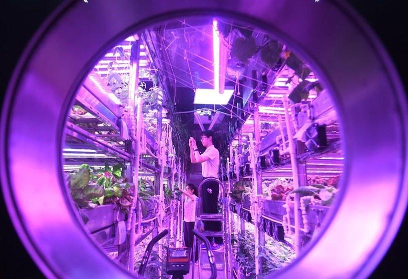Zakończono eksperyment mający na celu symulację 200 dni na Księżycu /materiały prasowe