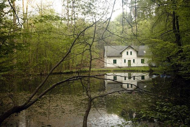 Zakup wakacyjnego domu może się opłacać /©123RF/PICSEL