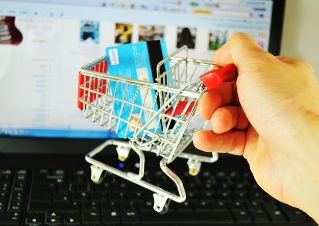 Zakupy w sieci powszednieją, a Polacy stali się świadomymi, pewnymi siebie e-konsumentami /©123RF/PICSEL