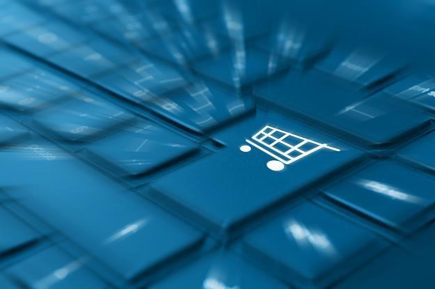 Zakupy w sieci - trwa dzień darmowej dostawy /©123RF/PICSEL