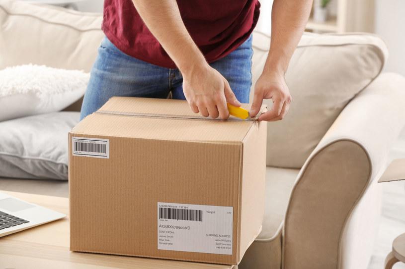 Zakupy w sklepach internetowych z pewnością są komfortowe, ale czy tańsze niż w sklepach stacjonarnych? /123RF/PICSEL