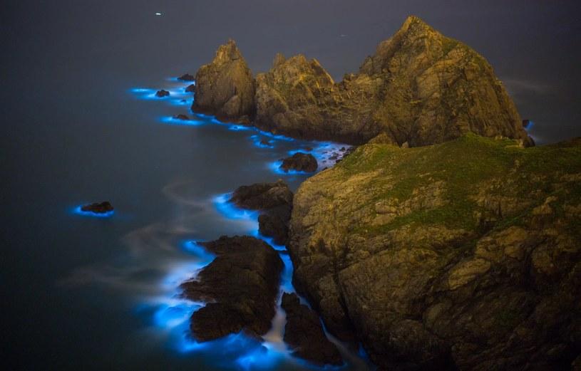 Zakwit bruzdnic jest obserwowany wokół brzegów tajwańskiej wyspy Matsu /materiały prasowe