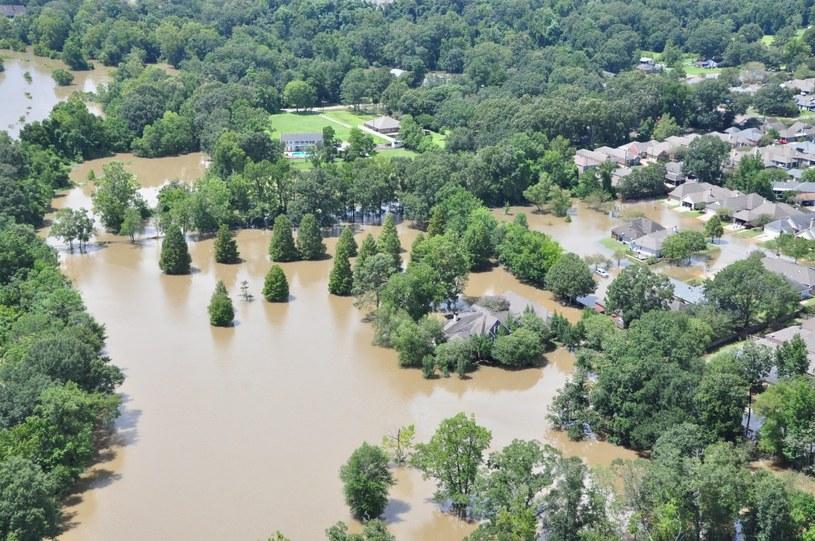 Zalane tereny w Luizjanie /MELISSA LEAKE/ /PAP/EPA