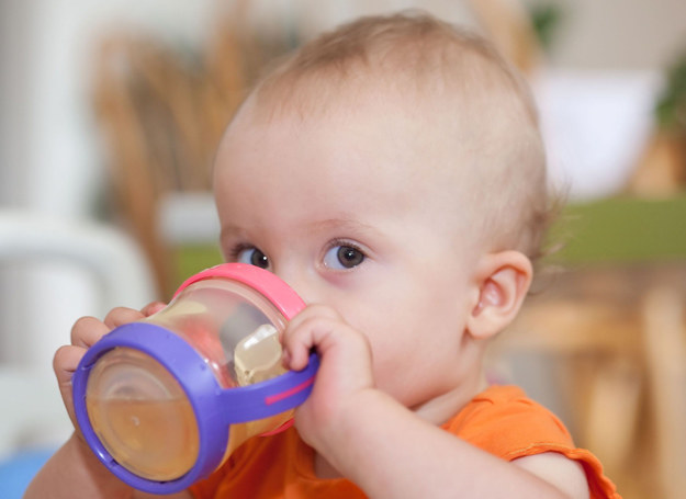Zalecana ilość płynów zależy od diety smyka, jego wieku, samopoczucia oraz od warunków zewnętrznych. /123RF/PICSEL