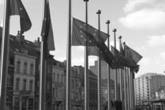 Żałoba w Brukseli