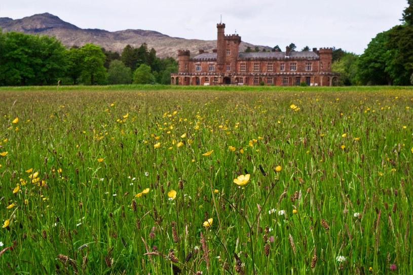 Zamek Kinloch znajduje się w Szkocji,  można obecnie kupić go funta! /123RF/PICSEL