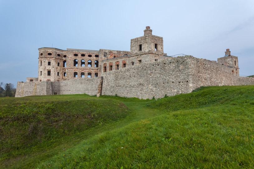 Zamek Krzyżtopór /123/RF PICSEL