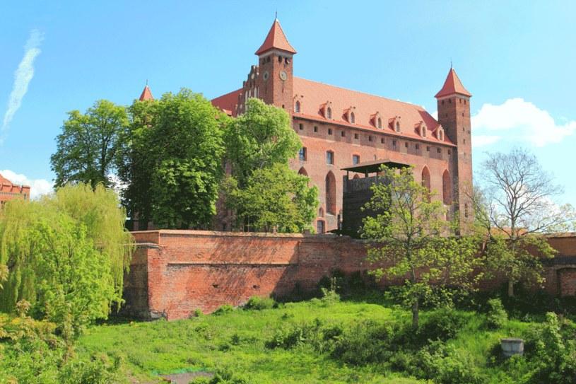 Zamek w Gniewie /123RF/PICSEL