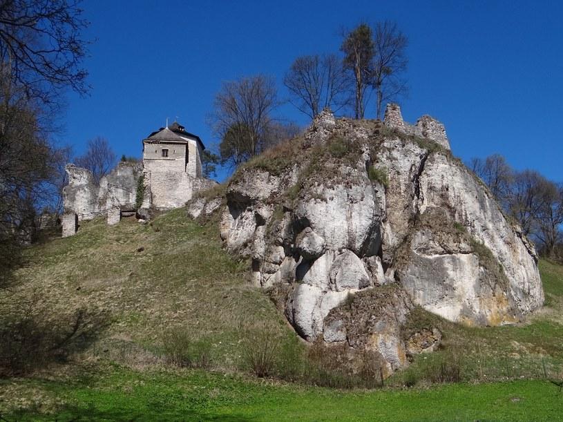 Zamek w Ojcowie jest jednym z symboli Jury Krakowsko-Częstochowskiej /Jerzy Opioła - Praca własna, CC BY-SA 4.0 /Wikimedia