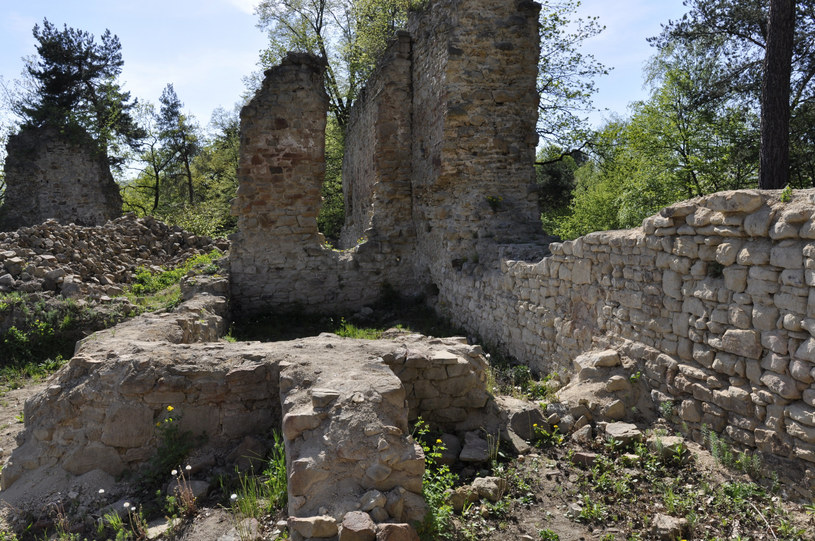 Zamek w Rożnowie /Albin Marciniak /East News