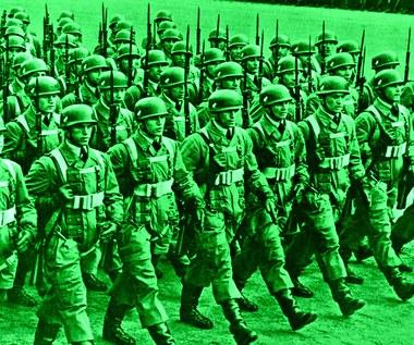 Zamęt, paraliż, strach: Zielone diabły Hitlera
