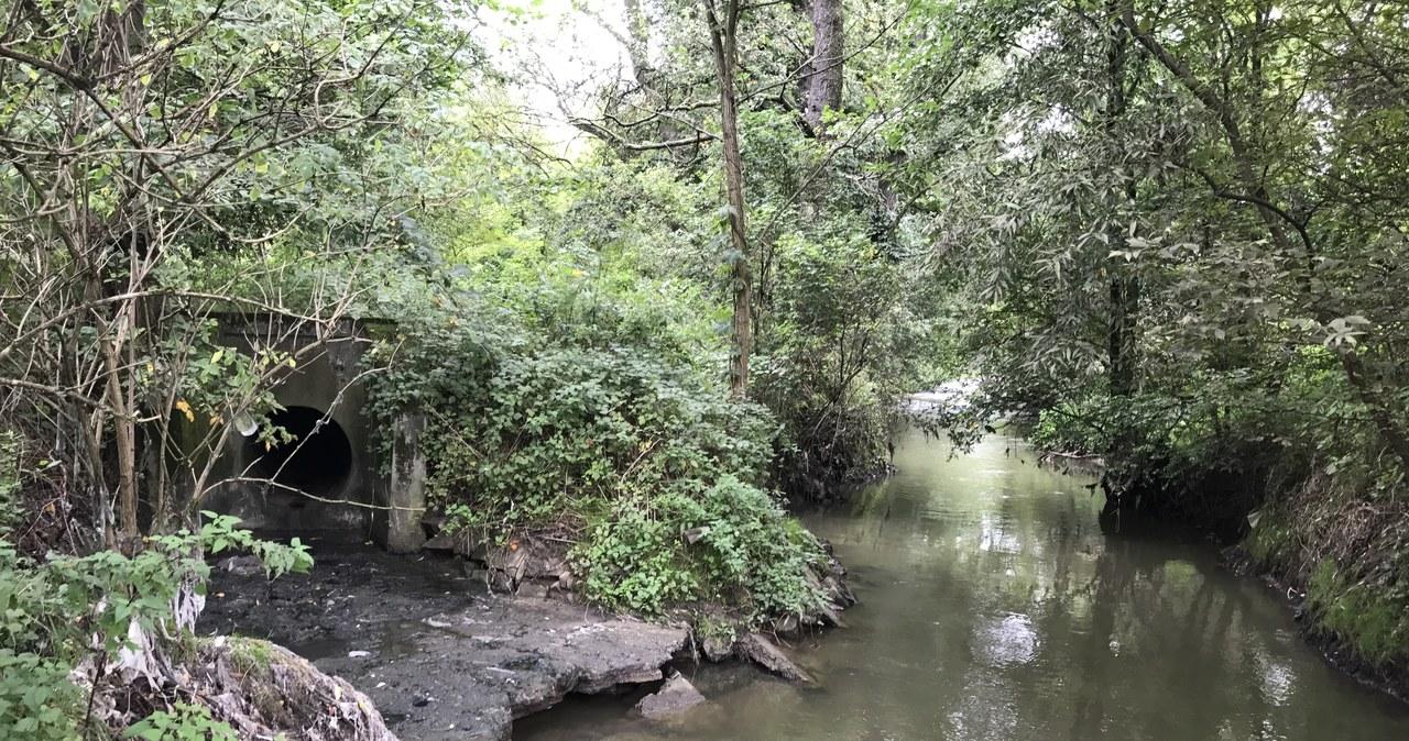 Zamiast do oczyszczalni, ścieki wpadają do krakowskich rzek
