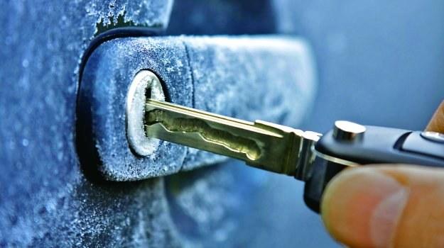 Zamkom szkodzi bezruch. Raz na pewien czas zamiast pilotem otwórzmy auto kluczykiem. /Motor