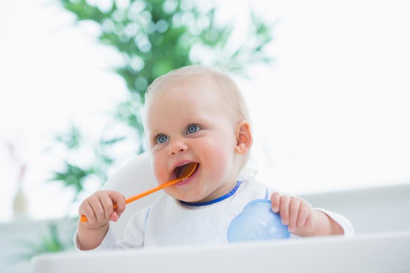 Zamroź jedzenie dla niemowląt /© Photogenica