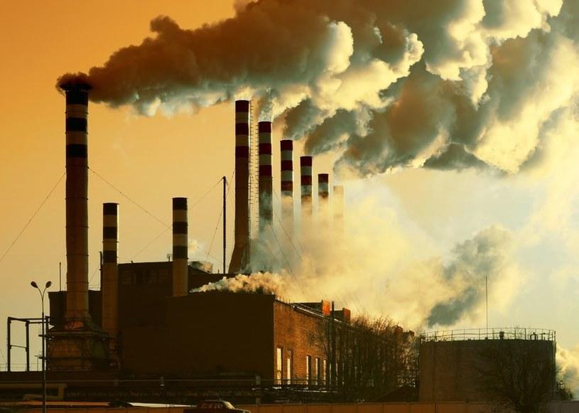 Zanieczyszczenia powietrza podrażniają nie tylko układ oddechowy /123RF/PICSEL