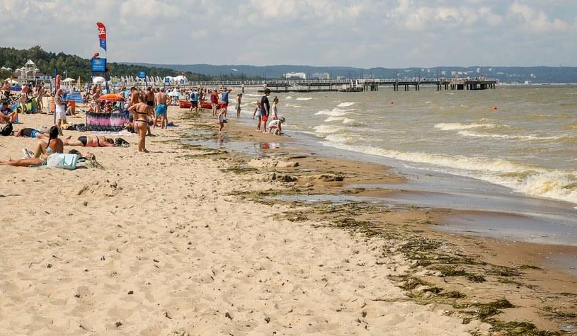 Zanieczyszczona przez zakwit sinic woda w Zatoce Gdanskiej /Fot. Karolina Misztal/REPORTER /Reporter