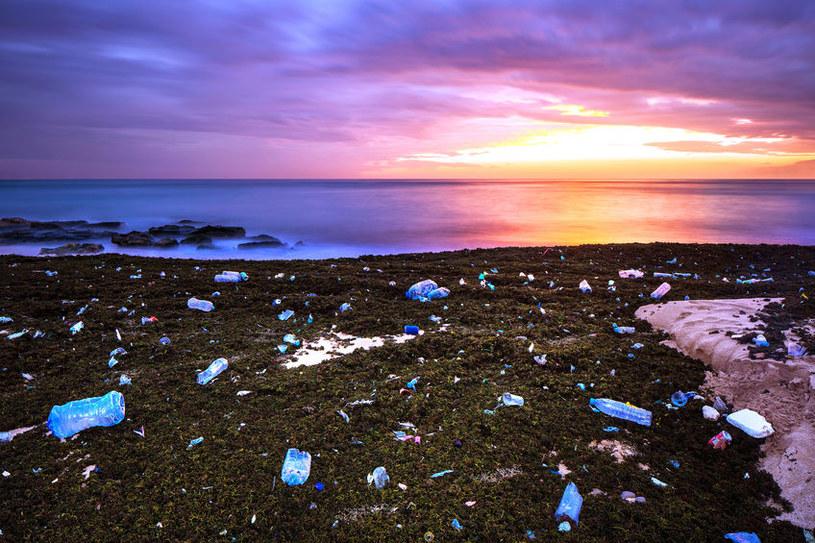Zanieczyszczone oceany, plaże i wybrzeża - wszystko dziełem człowieka /123RF/PICSEL