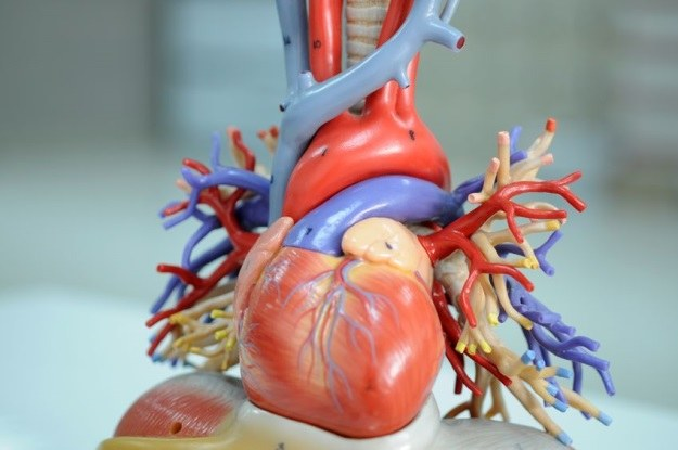 Zanieczyszczone powietrze wpływa negatywnie na układ krwionośny /123RF/PICSEL