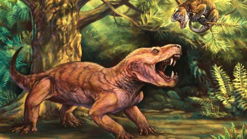 Zanim po Ziemi stąpały dinozaury, świat był pełen protossaków takich jak ten /Fot. Matt Celeskey /materiały prasowe